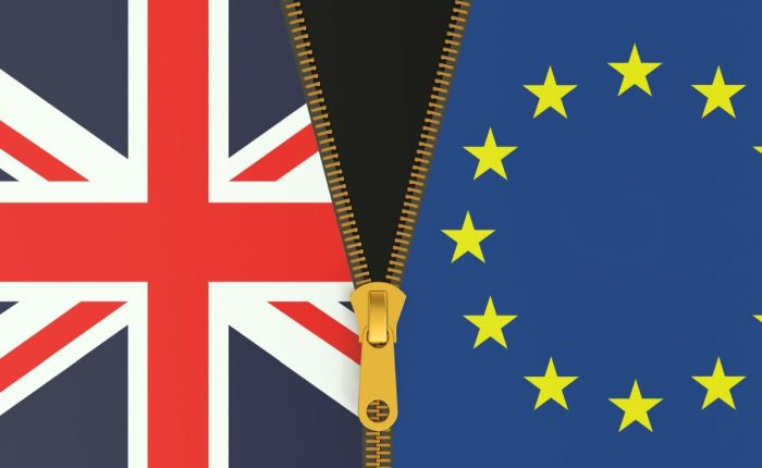 <em>Brexit: What the Hell Happens Now?</em> Essential reading that will scare your socksoff