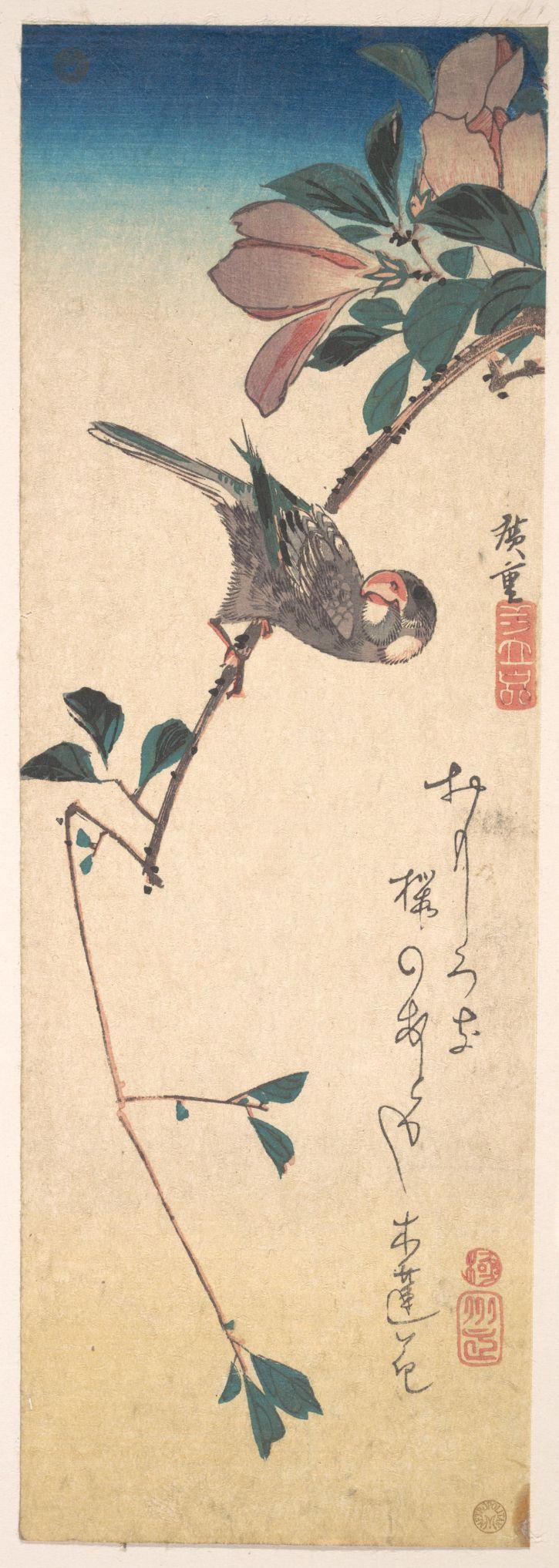 Hiroshige, Purple Magnolia and Hornbill, 1830