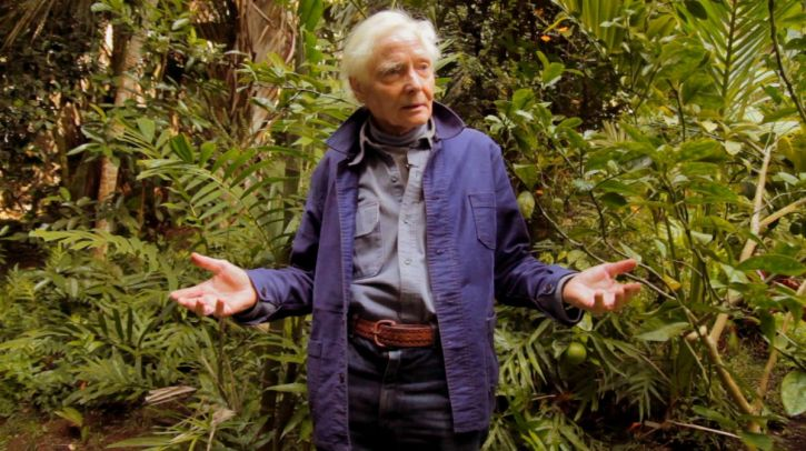 Poet and environmental activist WS Merwin